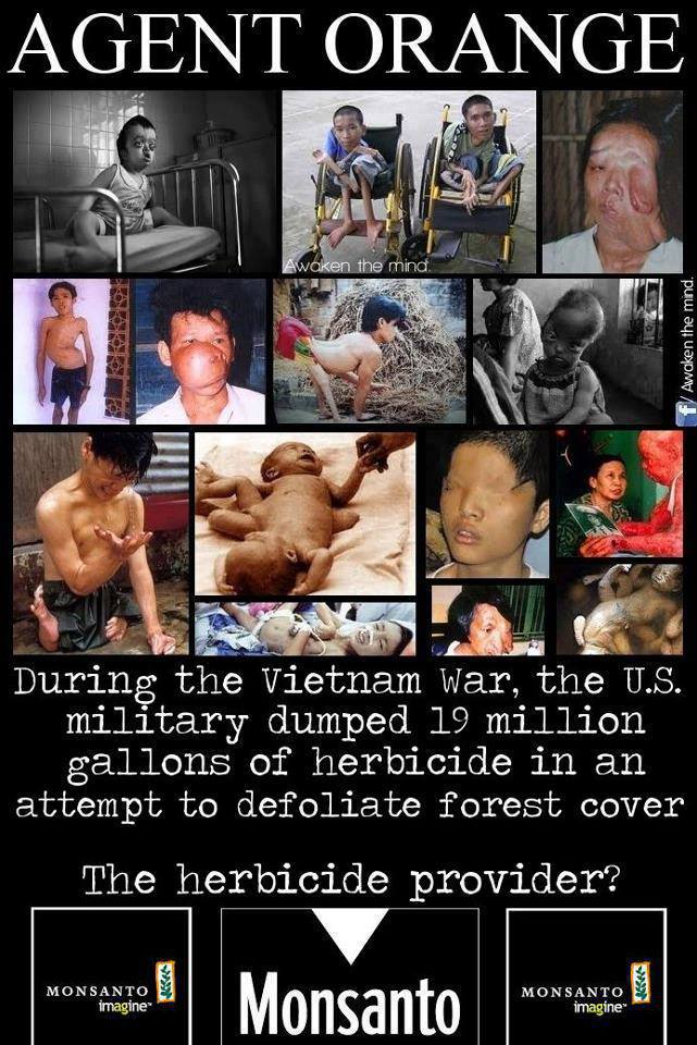 AGENT ORANGE .... brought to you by MONSANTO!